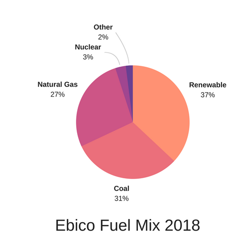 Ebico Fuel Mix 2018