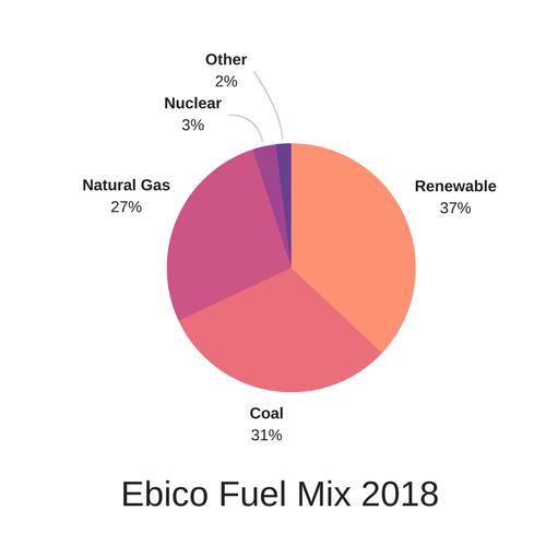 Ebico Fuel Mix 2018